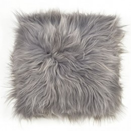 Sedák, islandská ovce, dlouhý vlas, šedá