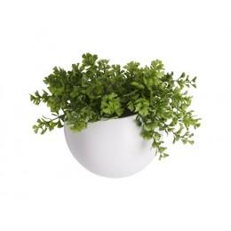 Nástěnná nádoba na květiny (květináč) GLOBE PRESENT TIME,mat zelený